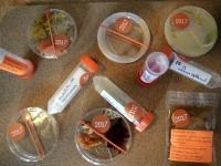 micro_micro: micro_prospecting specimens
