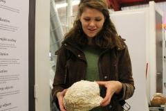 Mediamatic mycelium 'brick'