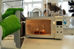 microwaving/heat extraction of dyes