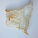 dried daughter paper