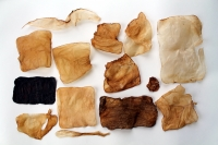 dried daughters