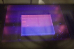 Gel electrophrenosis under UV light